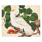 Cockatoo Wanddecoratie