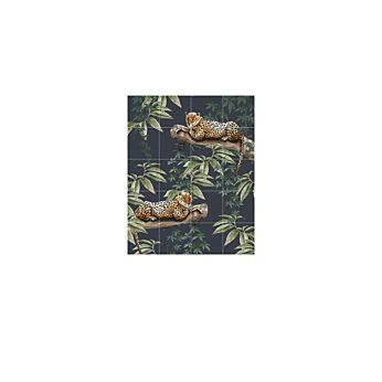 IXXI - Chilling in the jungle & Into the wild